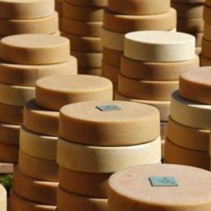 молочные продукты производства rainford